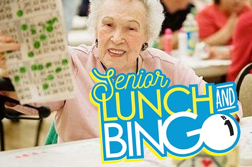 portfolio-image-senior-lunch-and-bingo