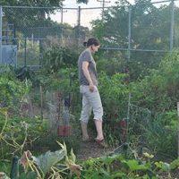 Community Garden_Amenities_Thumbnail
