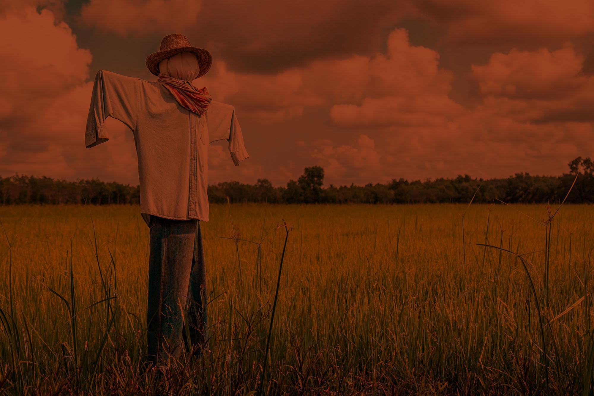 Community Scarecrow Contest